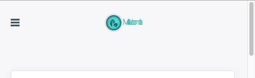 mj_homepage_warp_small_screen_logo_title